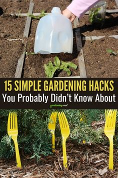 In this article you will find 15 useful gardening tips and hacks to make growing vegetables and gardening easier and more fun! #gardeninghacks #gardeningtips Garden Yard Ideas, Garden Projects, Garden Tools, Garden Fun, Planting Vegetables, Growing Vegetables, Purple Garden, Gardening Hacks, Small Space Gardening