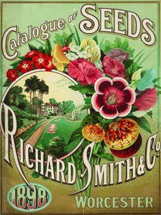 Richard Smith Catalogue Placa de lata