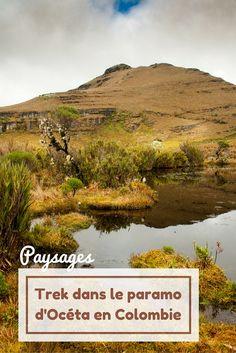 Un trek dans un des paysages les plus étonnants et les plus rares de cette planète ça vous tente ? Rendez vous dans le paramo d'Océta en Colombie où la végétation est vraiment particulière Santa Fe, Destinations, Road Trip, Country Roads, Mountains, World, Travel, Freedom, Culture