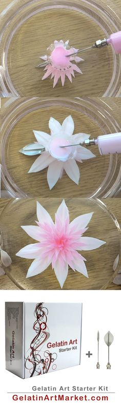 Learn how to make creamy flowers in fruit-flavored jelly using this easy-to-use … - Gelee Ideen Gelatin Recipes, Jello Recipes, Mousse, Puding Art, How To Make Gelatin, Jello Deserts, Gelatin Bubbles, 3d Jelly Cake, Jelly Flower