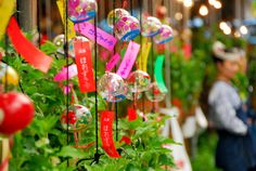 In #Hoozukiichi fair held every July 9th and 10th, potted ground cherries and wind bells hit more than 100 stalls. #asakusa #sensojitemple #japan #ほおずき市