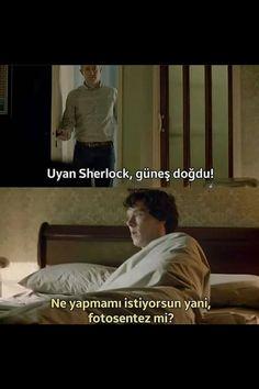 Poster Sherlock, Sherlock Holmes 3, Funny Sherlock, Benedict Cumberbatch Sherlock, Funny Tweets, Funny Moments, Really Funny, Funny Photos, Series Movies