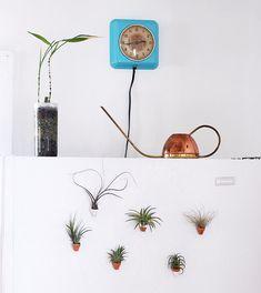DIY Mini Clay Pot Magnets