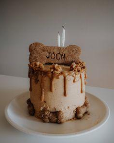 Dog Bday Cake, Puppy Birthday Cakes, 2nd Birthday, Doggy Birthday Cake Recipe, Easy Dog Cake Recipe, Dog Cake Recipes, Dog Food Recipes, Puppy Cake, Doggie Cake