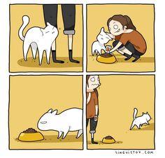 Divertidas ilustrações mostram a vida de quem tem um gato de estimação - A ilustradora russa Landysh cria ilustrações em forma de tirinhas que retratam muito bem a vida de quem possui um gato de estimação.