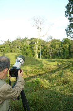 Take your best gear and be ready for our #Birdwatching #Tour.  Thousands of #bird lovers and fans come every year and enjoy our wildlife , specially Oneycreepers, Tanagers and Euphonias. #CostaRica #Tours #camara #Nature