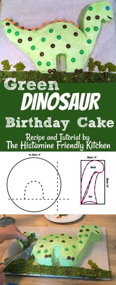 Green Dinosaur Birthday Cake - Recipe and Tutorial by The Histamine Friendly Kitchen