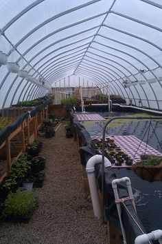 Aquaponics layout in an earth sheltered greenhouse Aquaponics Greenhouse, Aquaponics Fish, Fish Farming, Aquaponics System, Hydroponic Gardening, Organic Gardening, Greenhouse Ideas, Gardening Hacks, Permaculture
