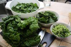csa recipe ideas for greens