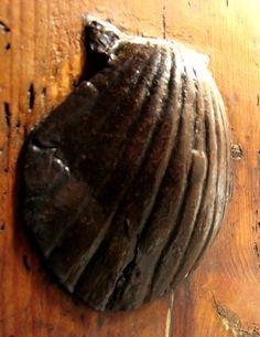 Herraje en forma de concha