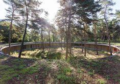 Лесной хостел в Бельгии