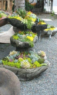 cordova gardens better than a martini the gardeners. Black Bedroom Furniture Sets. Home Design Ideas
