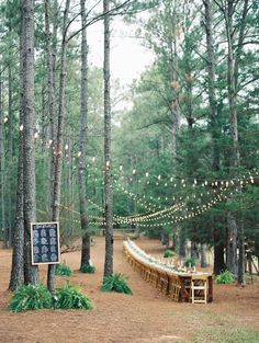 Outdoor reception under the trees and string lights. Love the LONG banquet table!