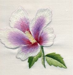 http://www.indusladies.com/forums/attachments/embroidery/28487d1350723326t-embroidery-embroidery-samplers-galpic_14bb.jpg