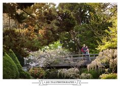 Engagement at Japanese Tea Garden Golden Gate Park, San Francisco Bay Area