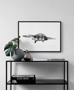 White and turtle Poster