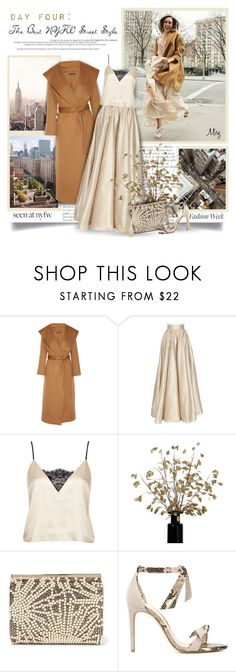 """""""Day Four: The Best NYFW Street Style"""" by thewondersoffashion ❤ liked on Polyvore featuring The Row, Jenny Packham, River Island, Jimmy Choo, Alexandre Birman and Chloé"""