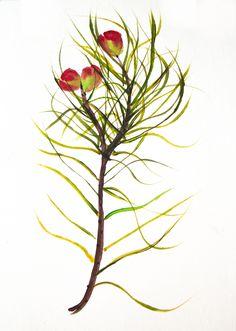 Coyiguay Alesso, Opera, Plants, Antique China, Artists, Flowers, Art, Opera House, Plant