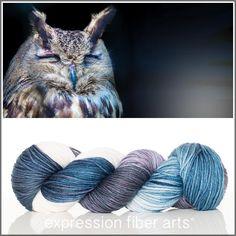 Expression Fiber Arts, Inc. - SLEEPING OWL SUPERWASH DEWY DK YARN, $23.00 (http://www.expressionfiberarts.com/products/sleeping-owl-superwash-dewy-dk.html)