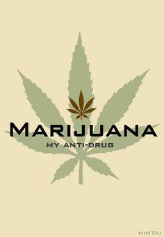 Buy Marijuana Seeds For Sale Online Dragon's Teeth, Weed Art, Seeds For Sale, Smoking Weed, Ganja, Herbalism, Herbs, Plants, Art