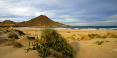 Descubre de la mano de travelingcheap.es las playas más bonitas de la costa almeriense del Parque Natural de #CabodeGata... Andalusia Spain, Andalucia, Belleza Natural, Wonders Of The World, Monument Valley, Wildlife, Mountains, Landscape, Outdoor