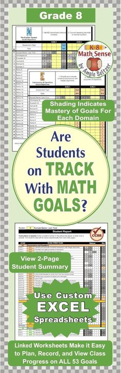 Grade 7 Common Core Math EXCEL Goal Tracker Spreadsheet with Paper