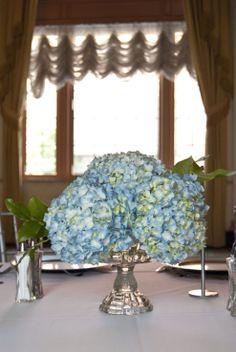 #hydrangea #centerpieces #JPParkerFlowers #FlowerPower http://www.jpparkerco.com/gallery/centerpieces/