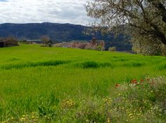 Vista de Baldellou desde la Solana