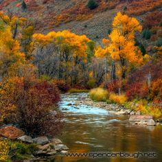 autumn, south fork ogden river