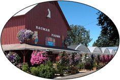 Bauman's Farm in Gervais