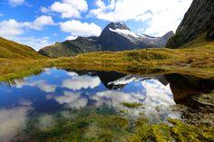 The Mackinnon Pass, Milford Track, New Zealand Milford Track, New Zealand, Mountains, Nature, Travel, Naturaleza, Viajes, Destinations, Traveling