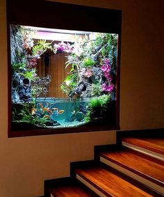 Goldfish Wall Aquarium Ideas for Home Interior All Credit to - . Goldfish Wall Aquarium Ideas for Home Interior All Credit to - Grüne zimmer - Diy Aquarium, Aquarium Design, Aquarium Mural, Saltwater Aquarium, Aquarium Fish Tank, Planted Aquarium, Freshwater Aquarium, Goldfish Aquarium, Aquarium House