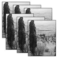 Format Frame 6 Pack - 8.5x11