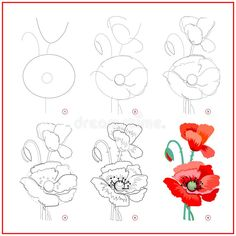 Poppy Drawing, Flower Art Drawing, Flower Drawing Tutorials, Flower Sketches, Floral Drawing, Drawing Step, Flower Drawing Tutorial Step By Step, How To Draw Flowers Step By Step, Beautiful Flower Drawings