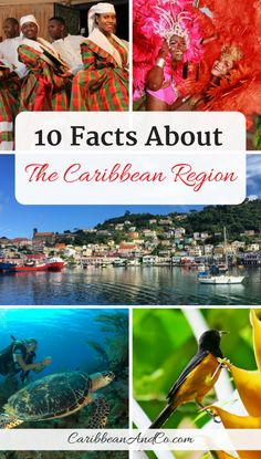 Check out our list of 10 facts about the Caribbean region covering a range of topics including its name geography population politics ethnic makeup language culture biodiversity tourism etc. Bermuda Travel, Barbados Travel, Belize Travel, Cuba Travel, Santa Lucia, Tahiti, Honduras, Cancun, Caribbean Vacations