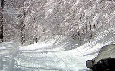 Beautiful Trails. Snowmobile Tours, Let It Snow, Vermont, New England, Skiing, Trail, Adventure, Winter, Traveling