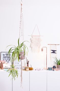 plant hanger via s t u d i o  { h a m m e l }. Click on the image to see more!