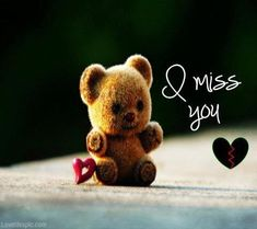 I Miss You love cute heart bear teddy missing I Miss You Cute, Miss U My Love, Missing You Love, Missing You Quotes, Cute Love Quotes, Sweet Quotes, Awesome Quotes, Miss U Images, Teddy Images