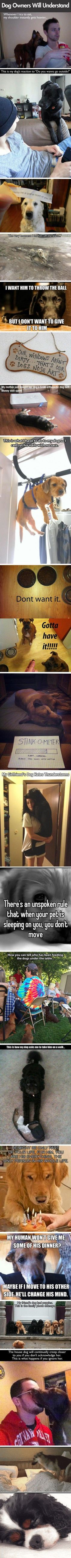 If you own a dog, then you can identify with these…