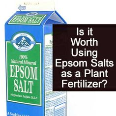 Is it Worth Using Epsom Salts as a Plant Fertilizer?
