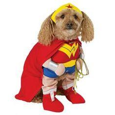 Costume Wonder Woman pour chien -- Votre chien a des supers pouvoirs ? Il veut rejoindre la Ligue de justice d'Amérique ? Offrez-lui son costume de super héros ! Wonder Woman, Superman, Batman, Dark Vador, Shrek ... Vous êtes sûr de trouver la combinaison en adéquation avec ses dispositions ! ;) (D'autres costumes par ici !)