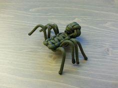 teckel dog spider - Google zoeken