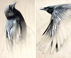 "Raven Art Study Set of Two Prints by TheHauntedHollowTree on Etsy, dollars. I must add this to my ""bird art"" collection! Raven Art, Audrey Kawasaki, Rabe, Art Studies, Bird Art, Painting & Drawing, Amazing Art, Concept Art, Cool Art"