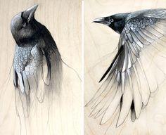 Étude de l'Art ensemble de deux estampes de Raven