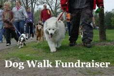 Heres a different fundraiser the fundraising dog wash dog walk fundraiser learn how to run one effectively photo by andrew ciscel flickr solutioingenieria Gallery
