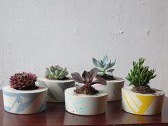Concrete Succulent Planter Small by ailandel on Etsy