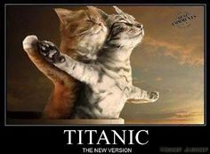Titanic,one love! we-are-all-animals