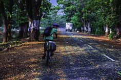 Some of the most beautiful roads in India!