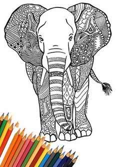 Art & Collectibles  Drawing & Illustration  Marker  elephant  elephant draw  elephant portrait  indian elephant african elephant  india  africa  print and color  zentangle  doodle  elephant doodle  elephant abstract  relax hobby