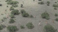24 GIFS captados por drones: el mundo como nunca lo habías visto
